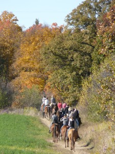 Autumn Trail Ride